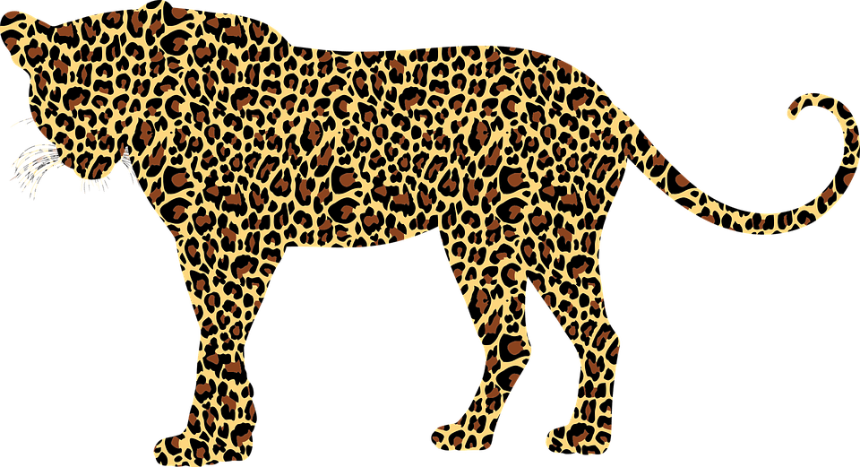 Animated Nature Wallpapers Free Download Free Vector Graphic Leopard Big Cat Feline Animal