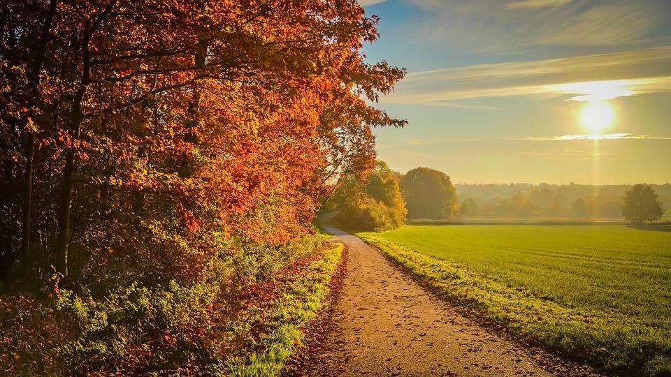 Vermont Fall Foliage Wallpaper Sunset Autumn Landscape 183 Free Photo On Pixabay