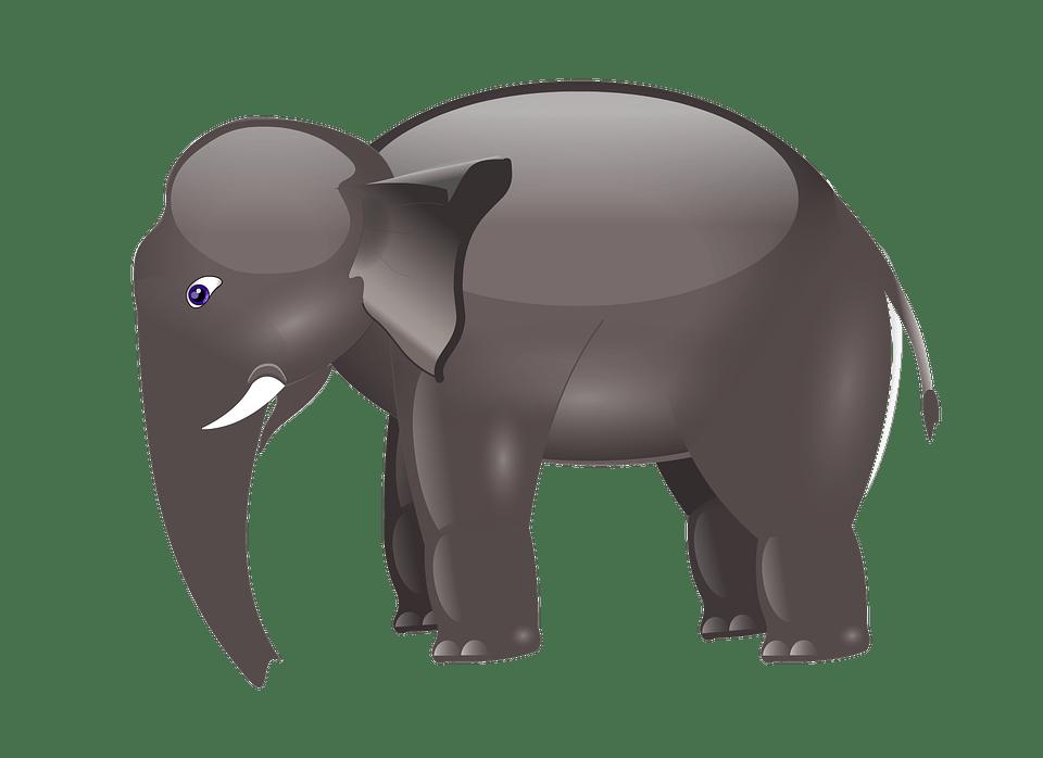 Girl Playing In Water Wallpaper Elephant Cartoon Animal 183 Free Image On Pixabay