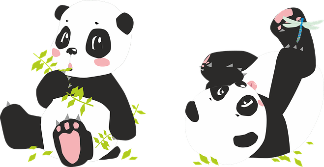 Cute Paw Print Wallpaper Panda Free Pictures On Pixabay