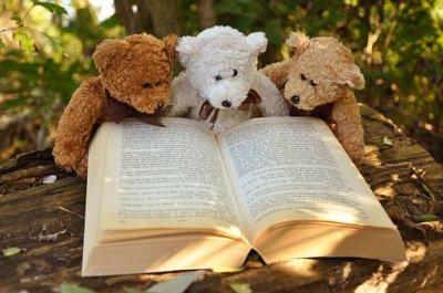Bär - Kostenlose Bilder auf Pixabay