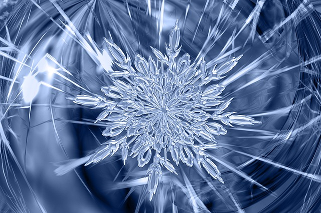 Autumn Tree Leaf Fall Animated Wallpaper Free Photo Ice Crystal Ice Form Frost Free Image On