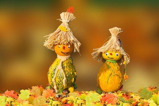 Fall Harvest Desktop Wallpaper Pumpkin Free Pictures On Pixabay