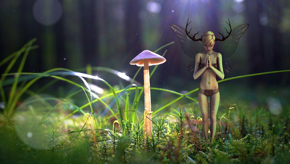 3d Fall Wallpaper Fantasy Forest Elf 183 Free Image On Pixabay