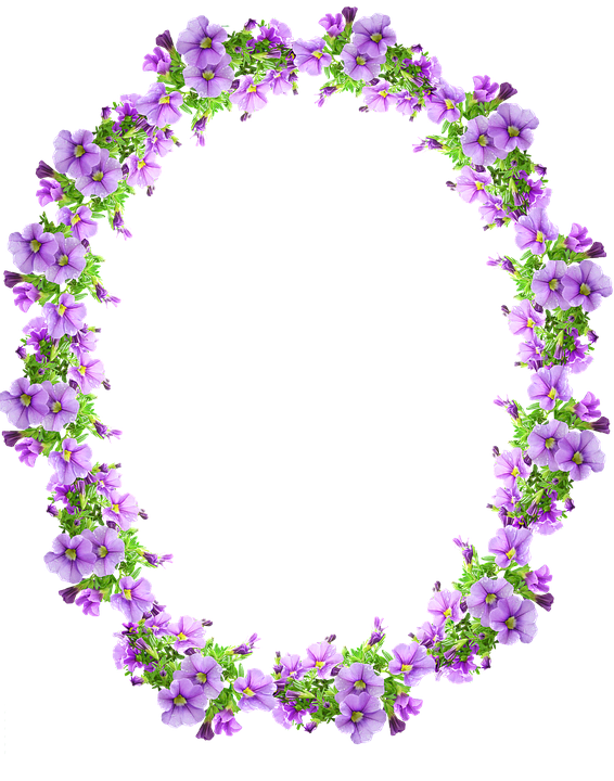 Cute Bordered Pastel Flower Wallpaper Frame Border Mauve 183 Free Photo On Pixabay