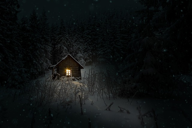 Winter Animal Wallpaper Cabin Winter Night 183 Free Photo On Pixabay