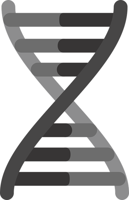 Animal Man Wallpaper Gene Icon Genetics Dna 183 Free Vector Graphic On Pixabay