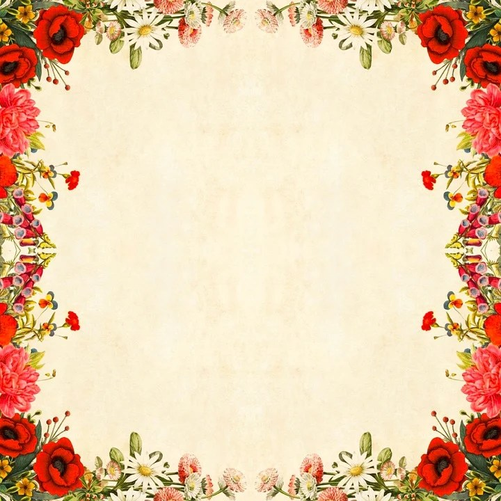 Cute Rustic Fall Wallpapers Flower Background Floral 183 Free Image On Pixabay