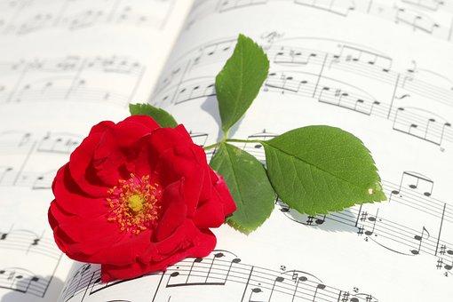 バラ, バラの花, ロマンチックな, 愛, レッド, 美容, 赤, 花弁, 楽譜