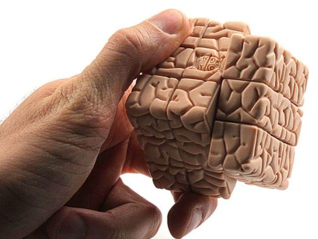 Картинки по запросу о мозге человека