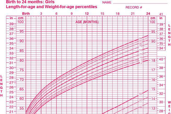 Baby Growth Chart Template Download Free  Premium Templates