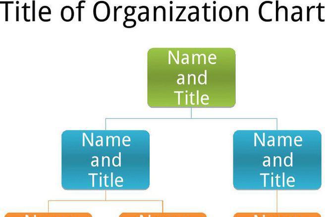 Basic Organization Chart Download Free  Premium Templates, Forms - basic organization chart