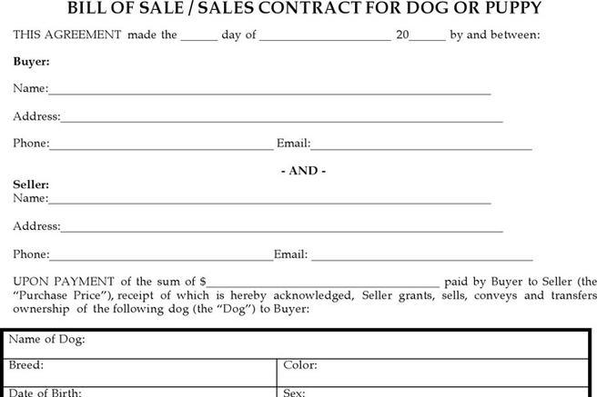 dog sale contract - Onwebioinnovate - puppy sales contract