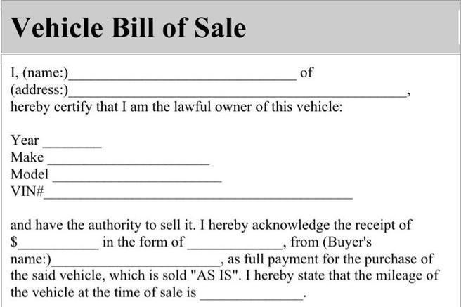 Blank Bill of Sale Templates Download Free  Premium Templates - bill of sale for car