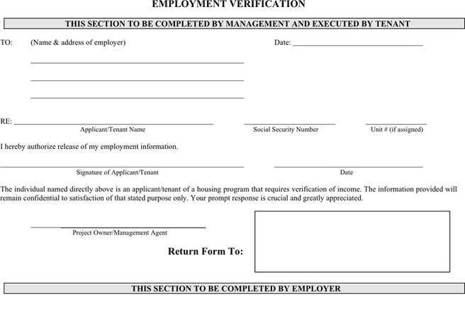 Employment Verification Form Download Free \ Premium - verification form