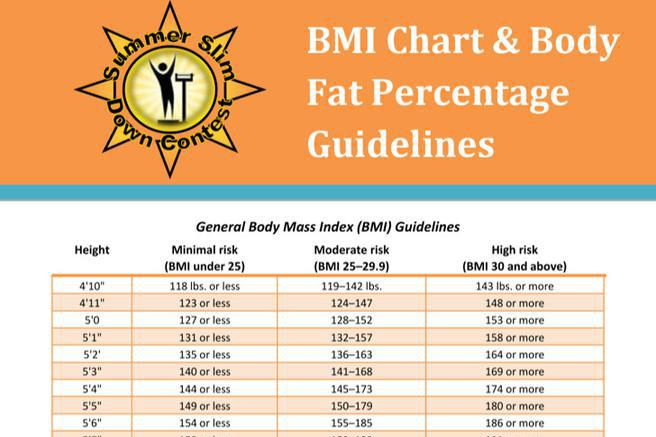 Fed Baby Chart Download Free  Premium Templates, Forms  Samples - body fat percentage chart template