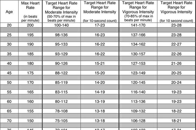 Heart Rate Chart Templates - gauheo - Heart Rate Chart Template