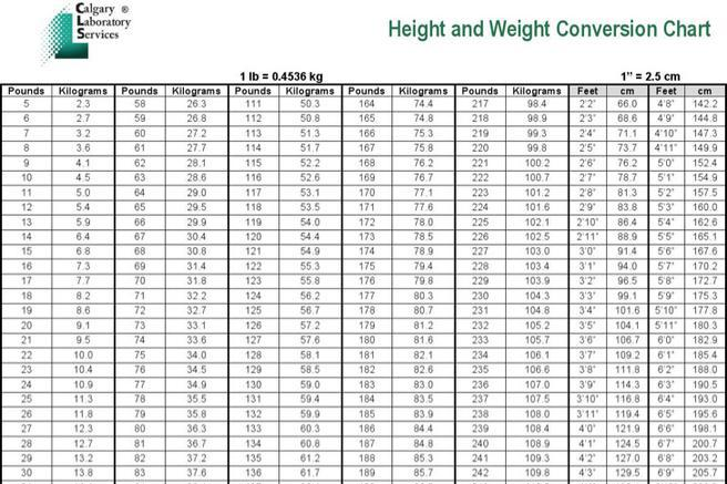 Conversion Chart Download Free  Premium Templates, Forms - kg to lbs chart template