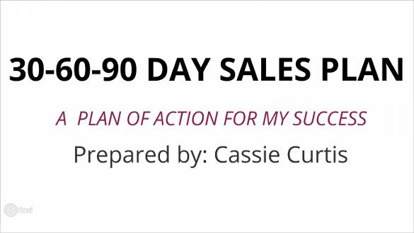 24+ 30 60 90 Day Plan Template Free Download