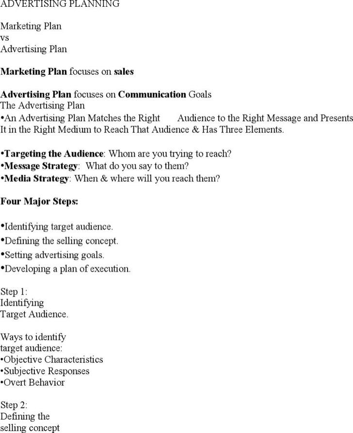 Advertising Plan Templates Download Free  Premium Templates