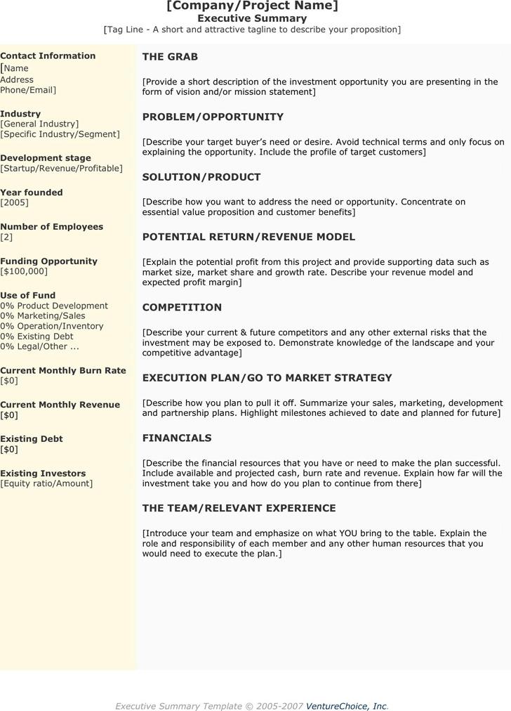 Executive Summary Template Download Free  Premium Templates
