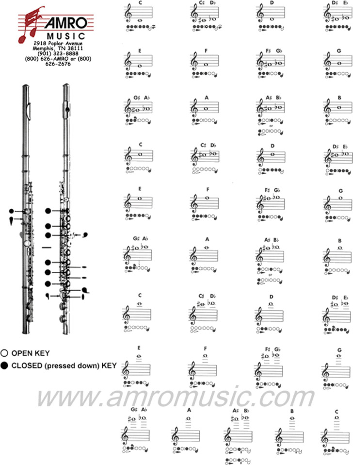 Flute Fingering Chart Download Free  Premium Templates, Forms