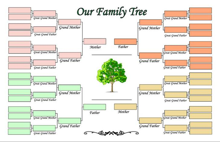 Blank Family Tree Templates Download Free  Premium Templates - blank family tree template