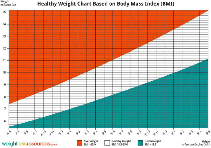 Ideal Weight Chart Download Free  Premium Templates, Forms