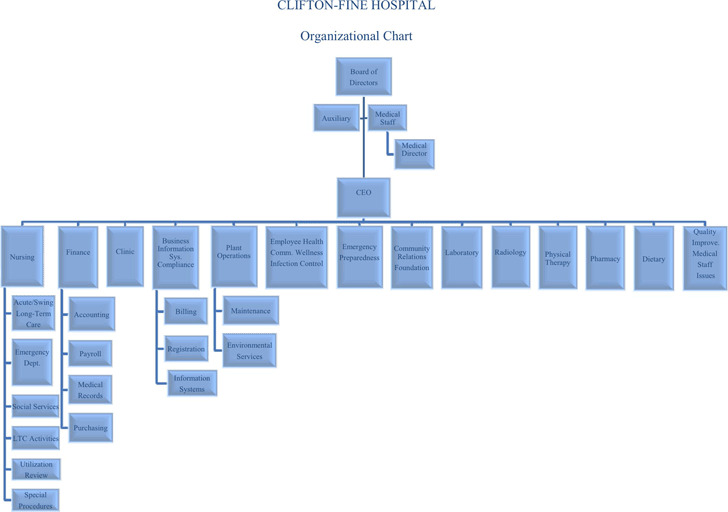 Hospital Organizational Chart Download Free  Premium Templates