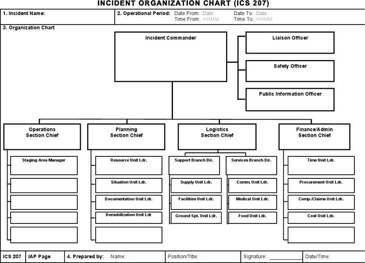 ICS Organizational Chart Download Free  Premium Templates, Forms - ics organizational chart