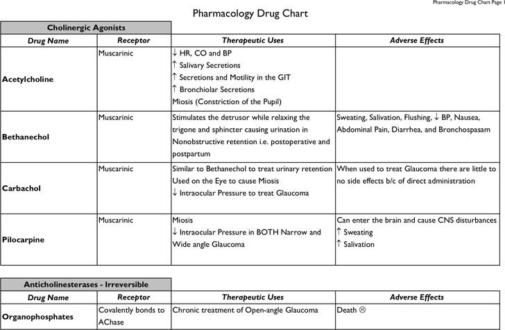Drug Classification Chart Download Free  Premium Templates, Forms