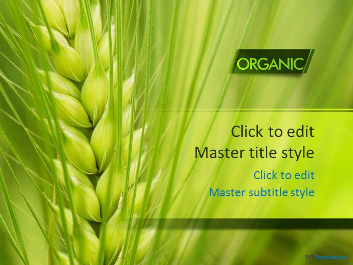 ppt slide designs free download