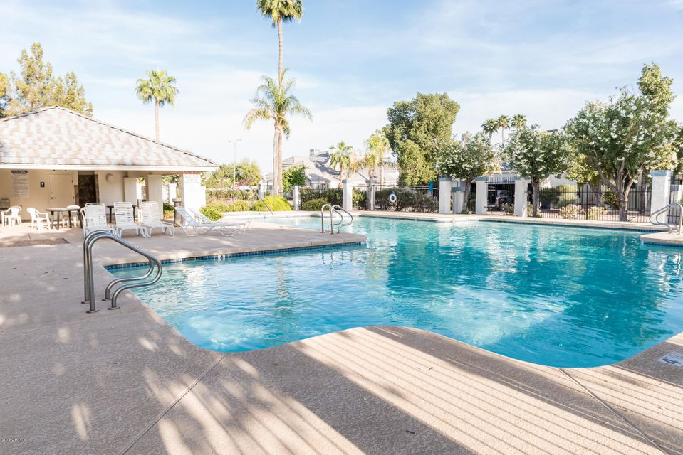 Swimming Pool Frankfurt 3475 W Frankfurt Drive Chandler 85226 Sold Listing Mls 5752733 Better Homes And Gardens Bloomtree Realty