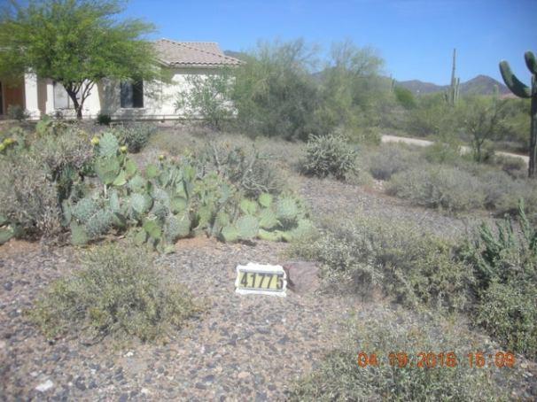 41775 N CANYON SPRINGS Drive N, Cave Creek, AZ 85331