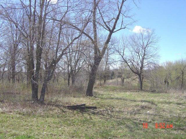 TBD LOT 1 DONNIE JAY LANE, Detroit Lakes, MN 56501