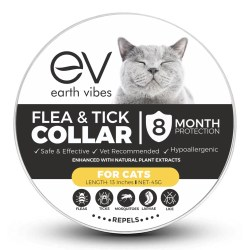 Small Crop Of Essential Oils For Fleas