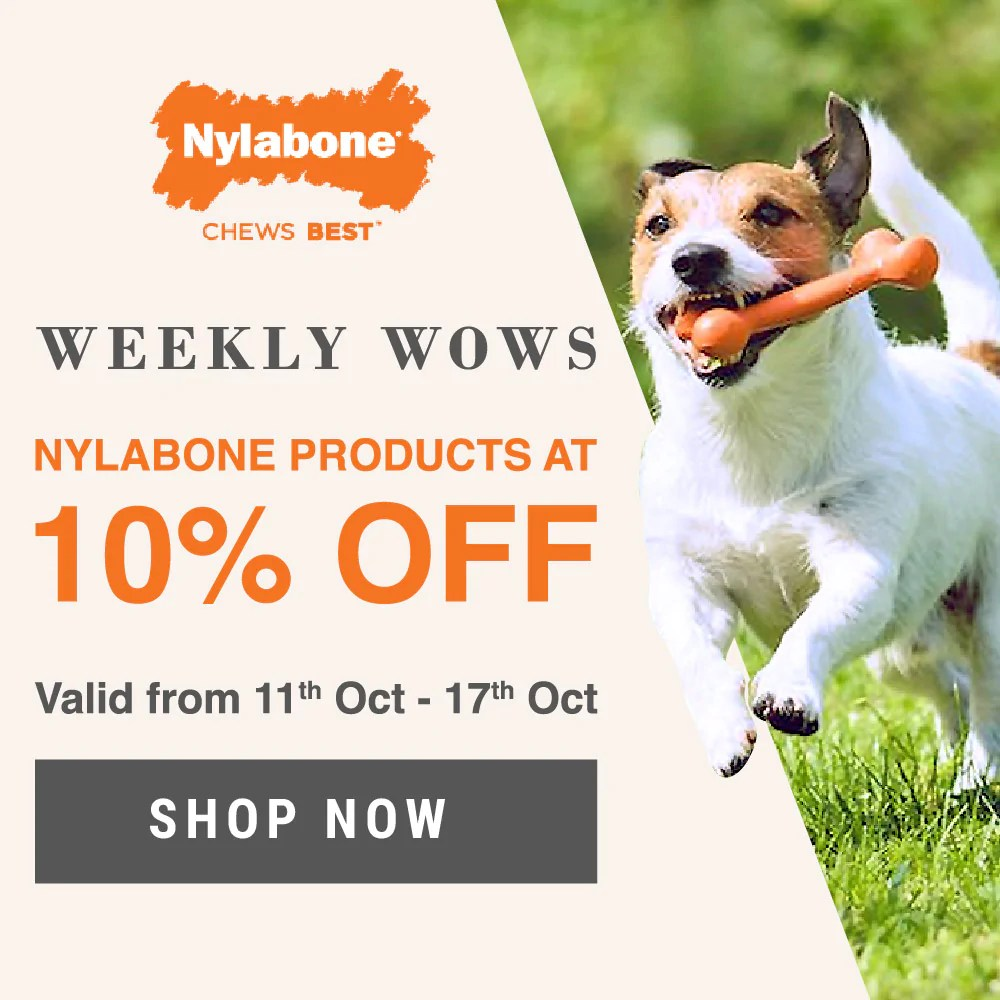 V Naam Ke Log Buy Pet Supplies Online In India Dog Cat Products Online