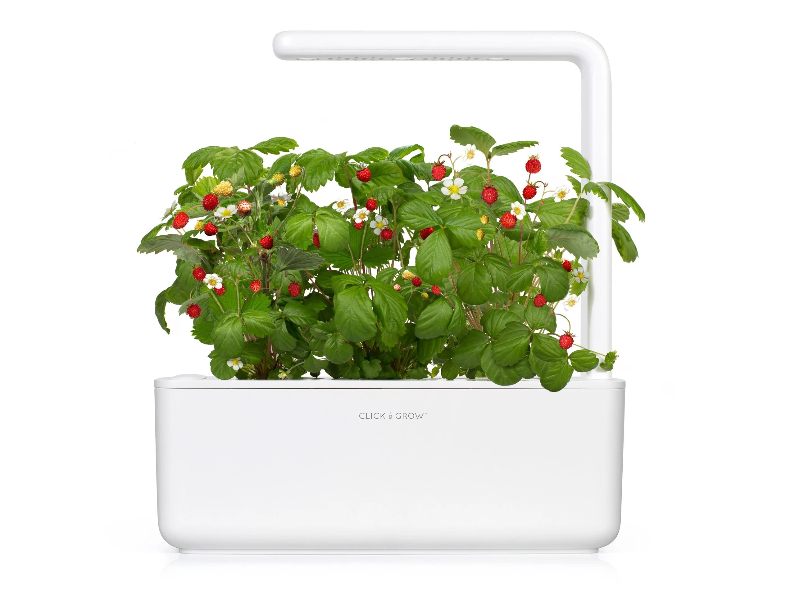 Garten Design Online Shop The Smart Garden 3
