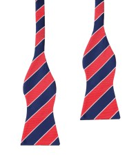 Navy Blue Red Bow Ties