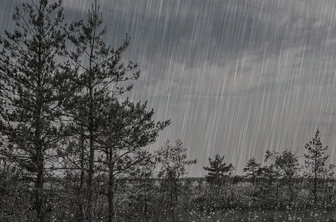 Cute New Wallpaper Download Rainy Day Script Discovery Center Store