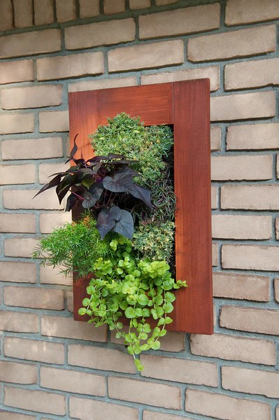 Wood Table Top Rustic Framed Grovert Living Wall Kits | Urban Zeal Planters