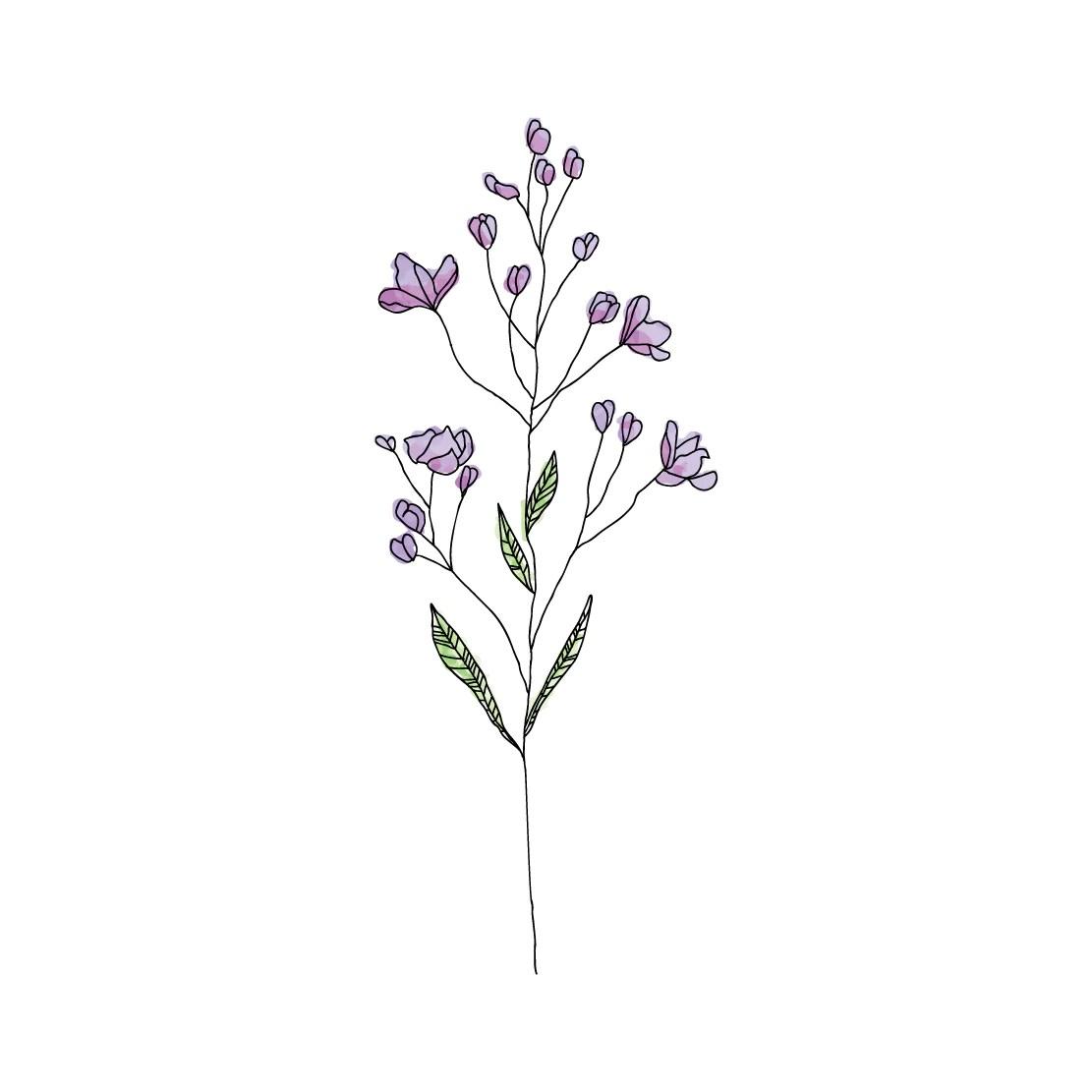 Cute Trumpet Wallpapers Wildflower Habitatt Supply Co