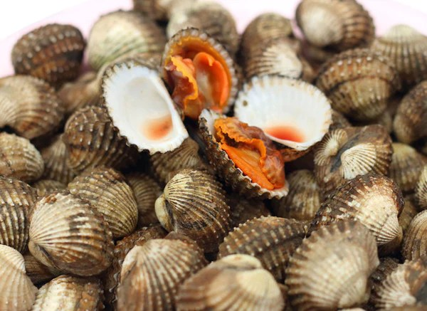 Chinese Wholesale Products Blood Clams Taste Cooking Tips – The Lobster Place