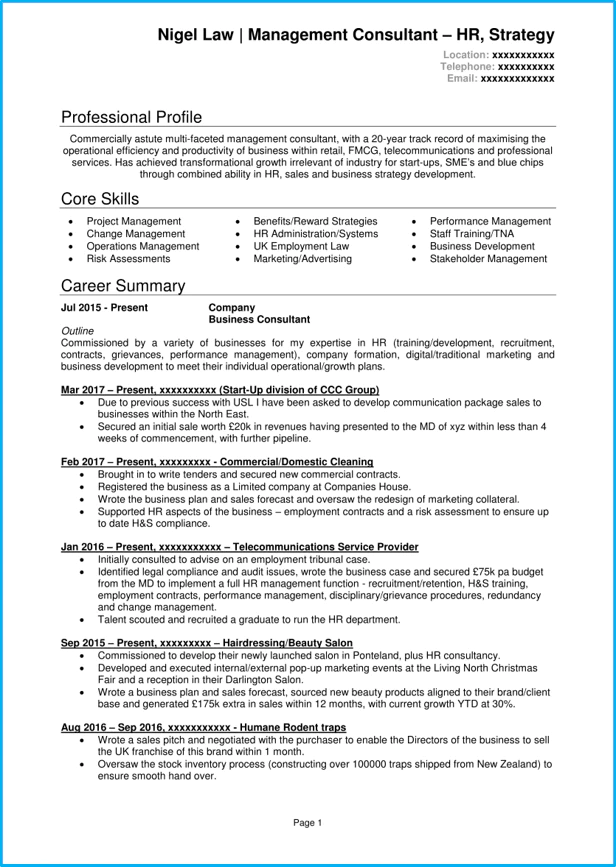 resume with qualification summary examples