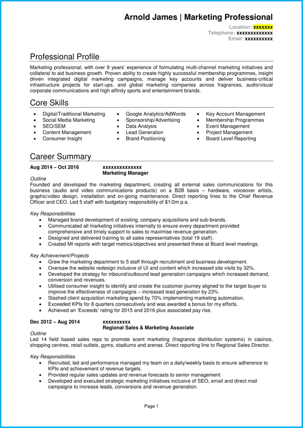 digital marketing manager cv template