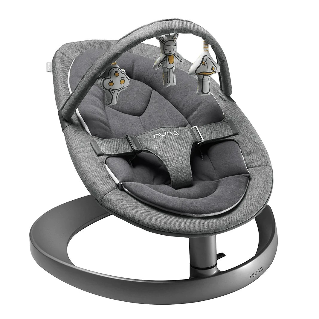 Joie Baby Swing Rocker Bouncer Little Baby Online Store Singapore