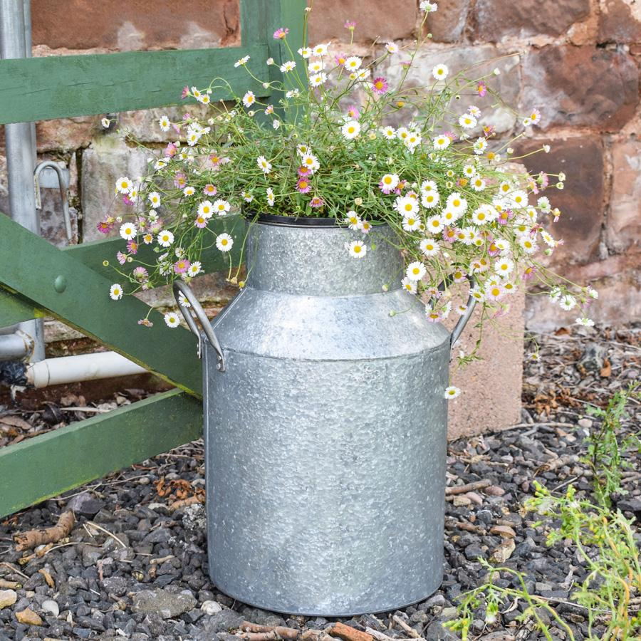Decorative Milk Urn Large Galvanised Milk Churn Planter