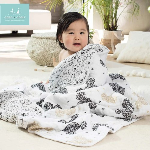 Medium Crop Of Aden And Anais Dream Blanket