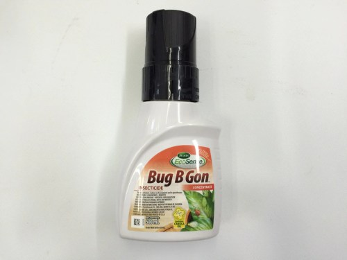 Medium Of Bug B Gone