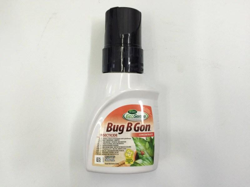 Large Of Bug B Gone